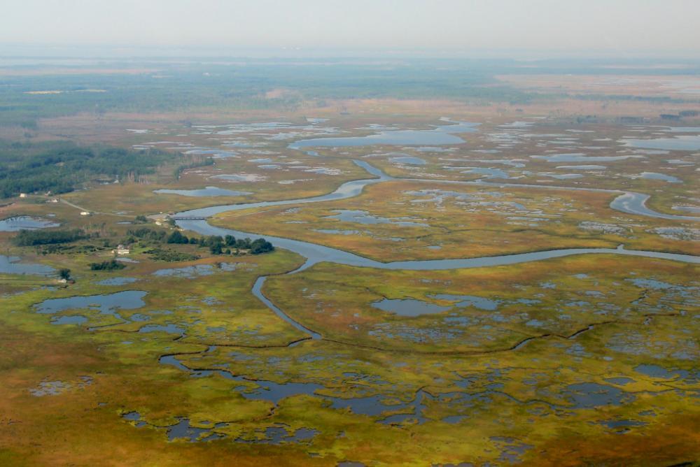 U.S. Coastal Wetlands. © M. Kirwan/VIMS