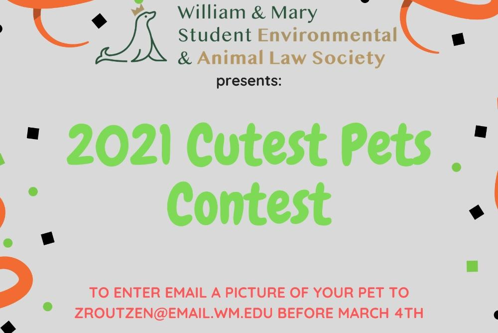 2021 Cutest Pets Contest Flyer