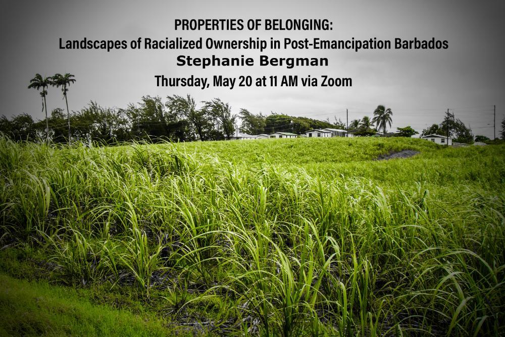 poster, grass, storm sky, trees, Stephanie Bergman, defense