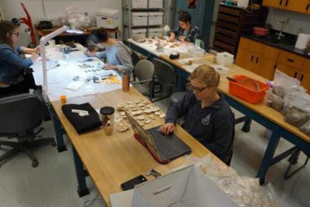 lab, students, artifacts