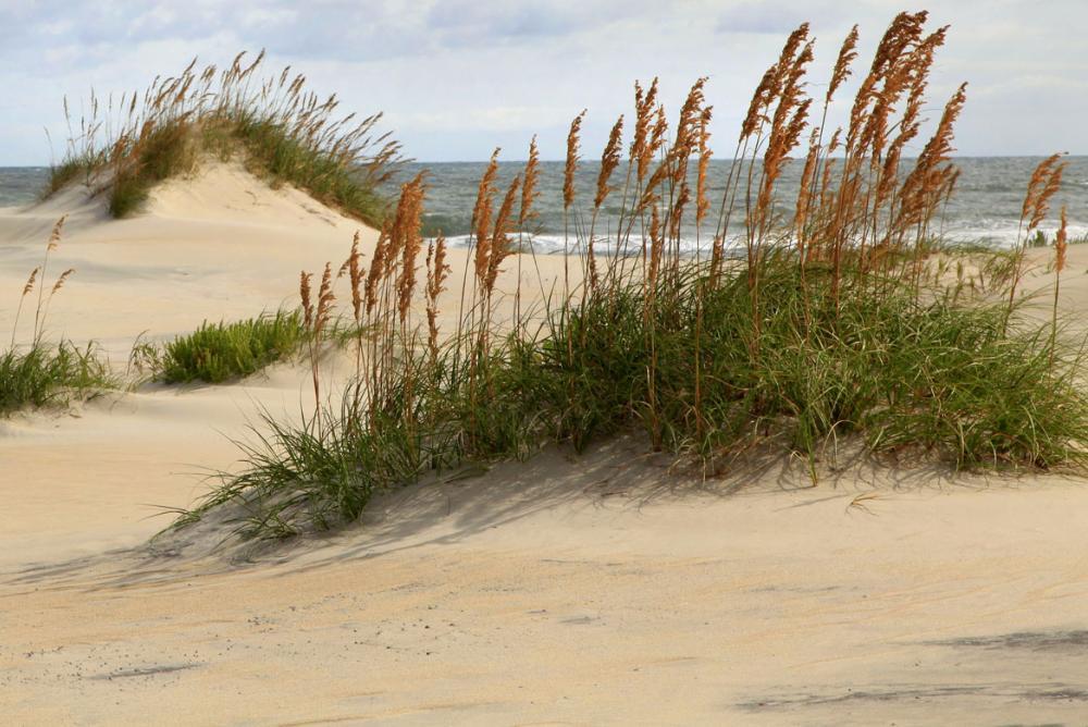 Cape Hatteras National Seashore, NC