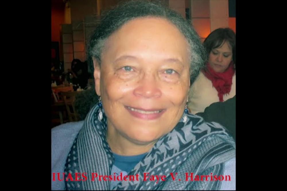 Dr. Faye V. Harrison