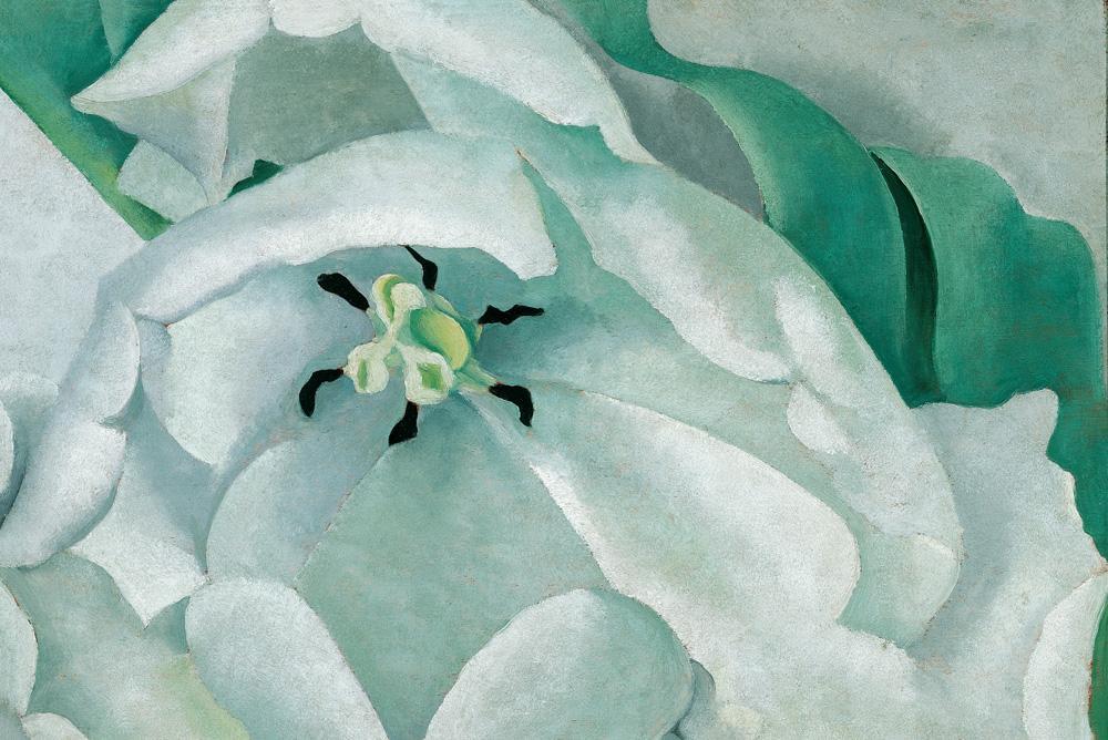 GEORGIA O?KEEFFE | White Flower, 1932