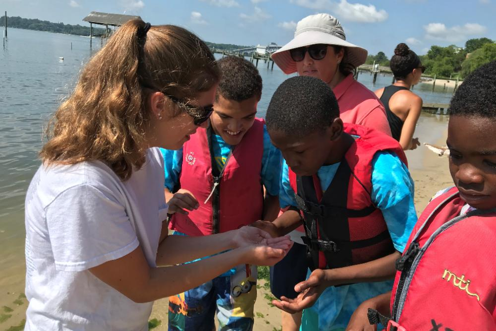 Camp Launch participants investigate an animal collected during a beach seining trip