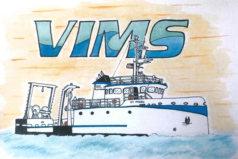 Artwork submitted by Nicolas Gomez, Marine Science Day 2019