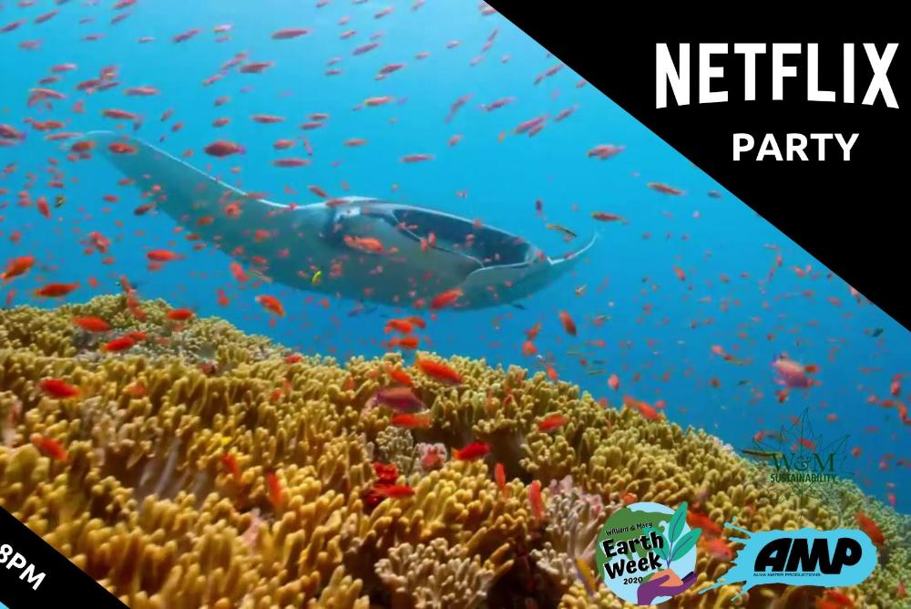 Netflix Party: Our Planet