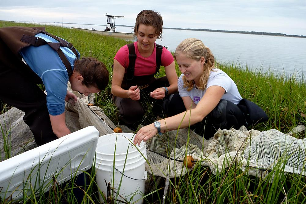 outside, outdoors, people, graduate, students, grasses, vims, waders, river, boats, buckets, research, marine science