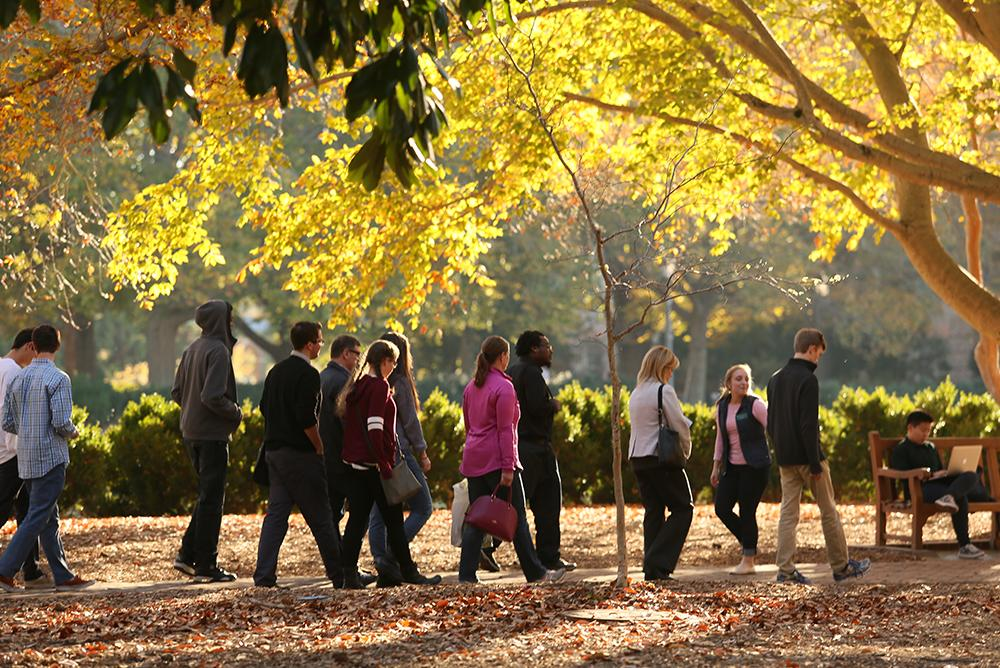 students, outdoors, outside, people, tours, walking, trees, fall, autumn, parents, family, families