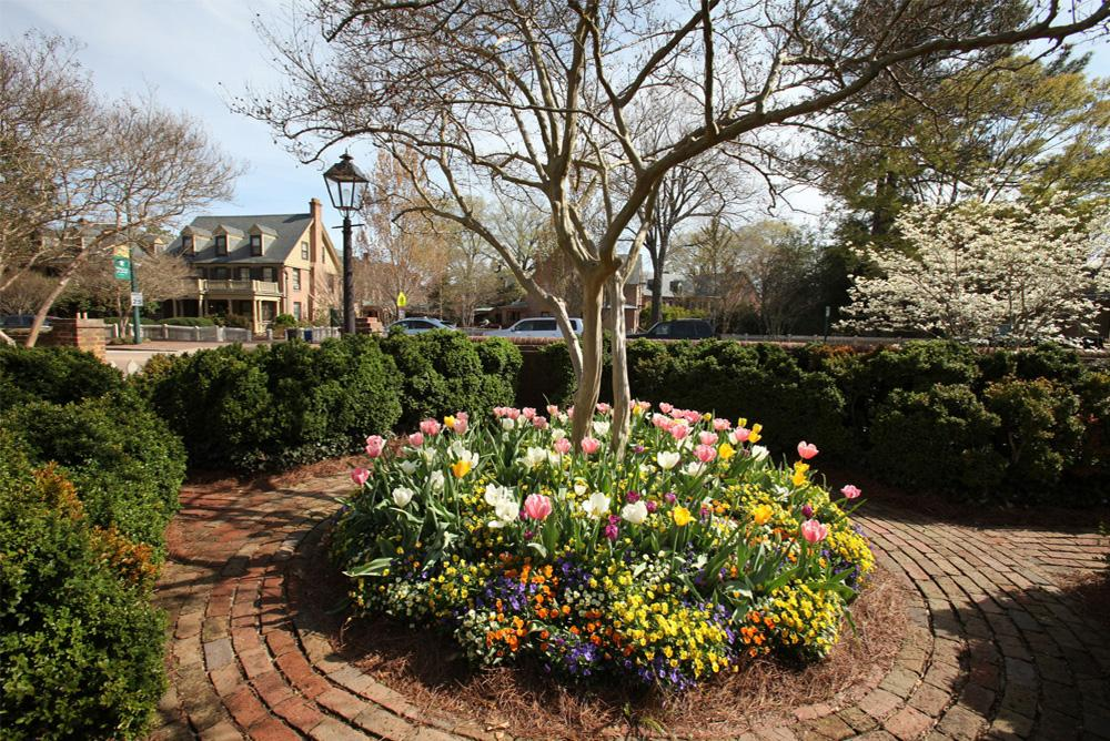 outdoors, outside, trees, flowers, spring, courtyards, blow memorial hall