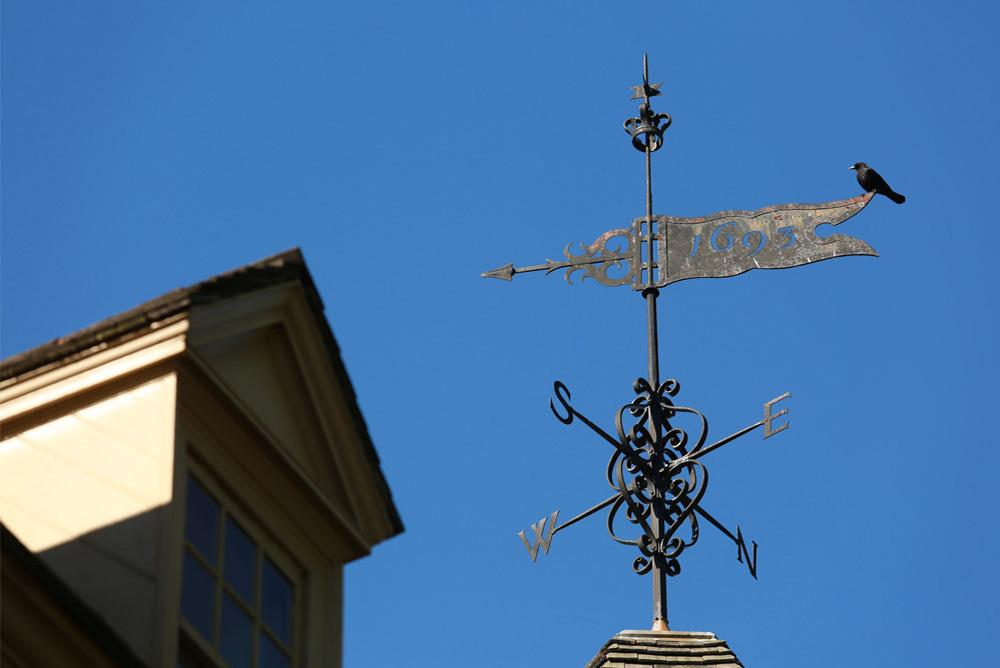 outdoors, outside, wren, weather vane, weathervane, roof, bird